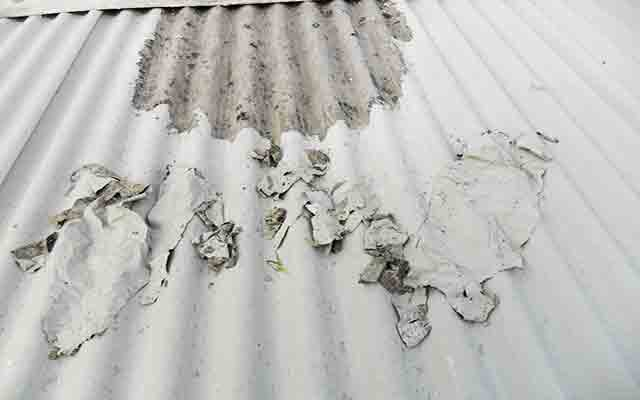 Dacfill Roof Paint