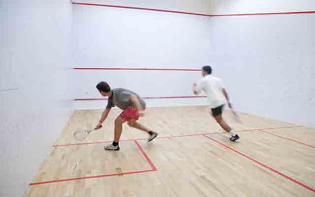 Squash Court Paint
