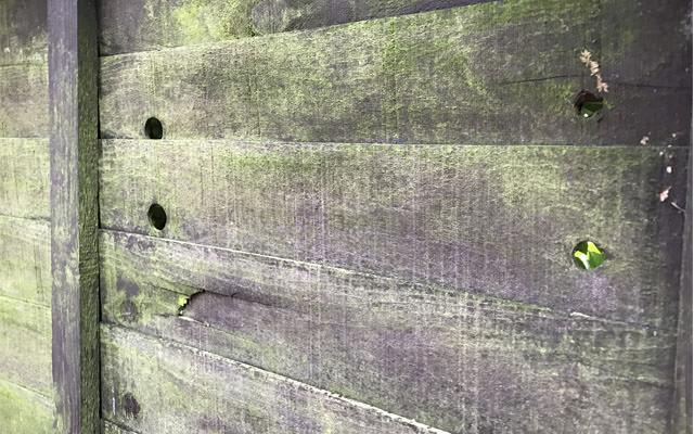 fence-close-up
