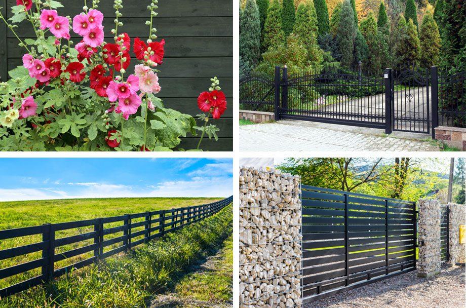 Black Fence Promain