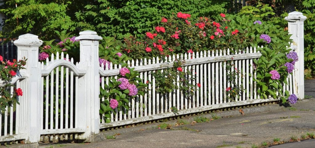 Coloured Fence 3