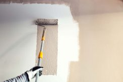 When to Paint New Plaster