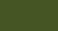 Greenrock (RAL 6003)