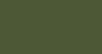 Olive Green (RAL 100 30 20 or 12-B-27)