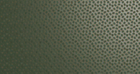 Olive Green (RAL 100 30 20)