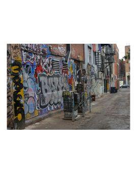 Coo-Var P101 Anti-Graffiti Coating
