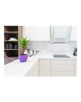 Centrecoat R21 Hard Surface & Worktop Countertop Cleaner, 500ml