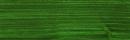 729 Fir Green