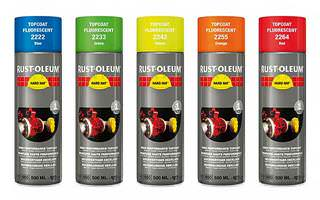 Fluorescent and Reflective Paints