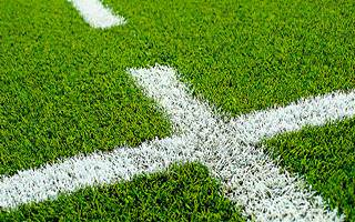 Astroturf Artificial Grass Paint